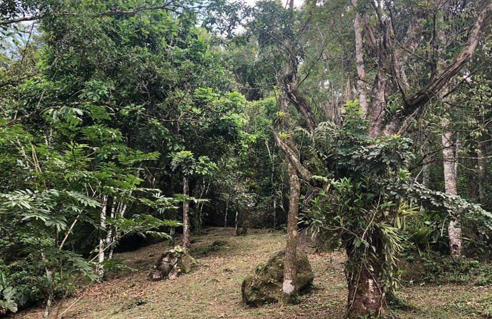 Área de 1500 metros para vender na Ressaca em Ubatuba SP